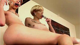 Slim trap pleases her anus